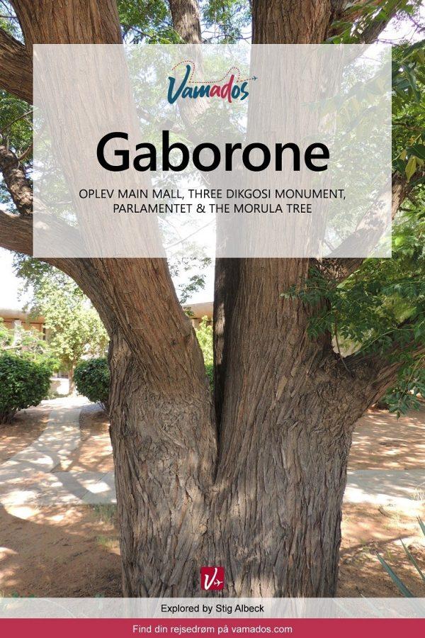 Rejseguide til Gaborone