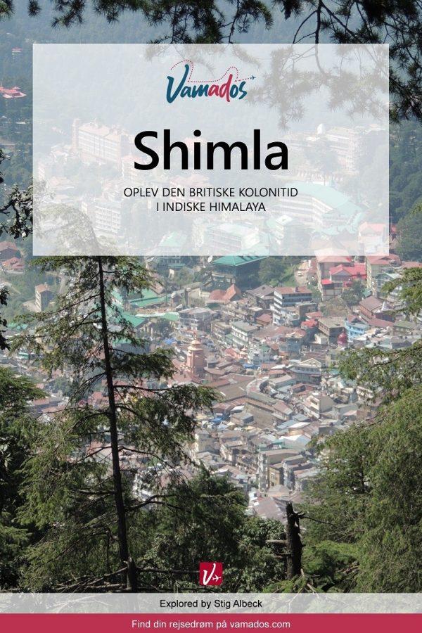 Shimla rejseguide